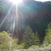 Six Rivers National Forest Sun Peeking