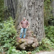 Kenin on base of Redwood