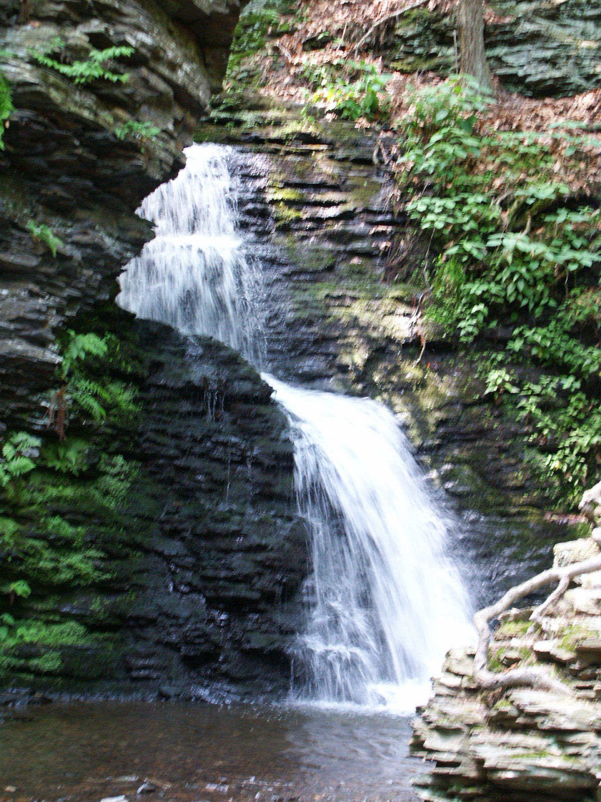 Bushkill Falls | Niagara of Pennsylvania | Poconos | Pet ...