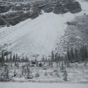 Ice Fields in the Canadian Rockies