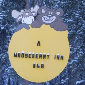 A Mooseberry Inn Tok, AK