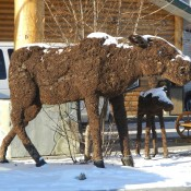Moose Topiary at Pikes Waterfront Lodge Fairbanks Alaska