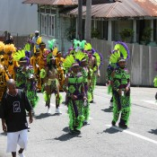 Jaggesar and Associates - Carnival in Trinidad
