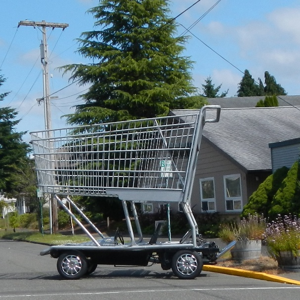 Shopping Cart Car