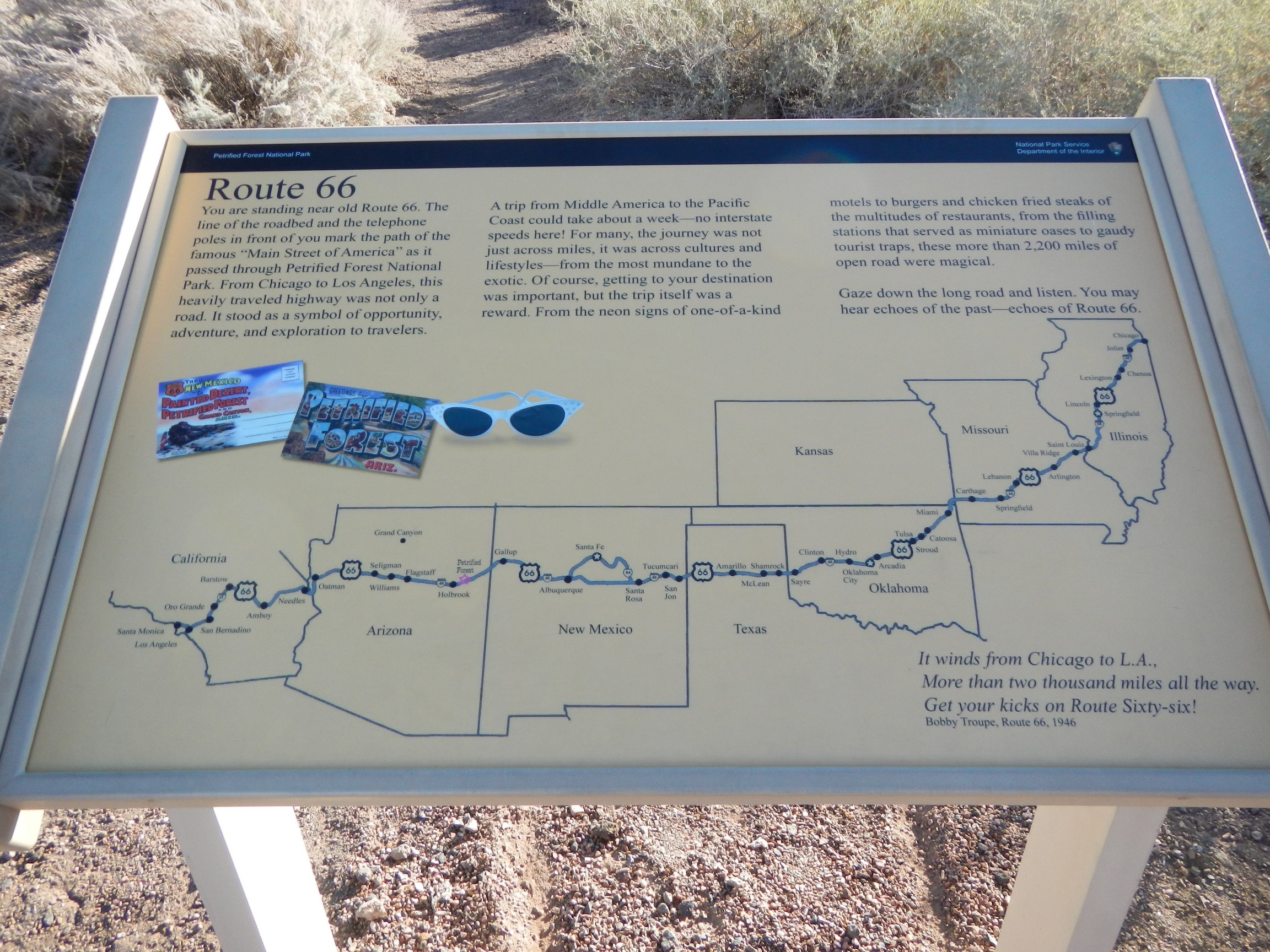 Petrified Forest National Park AZ Facts Travel Planner - Map of us national forest