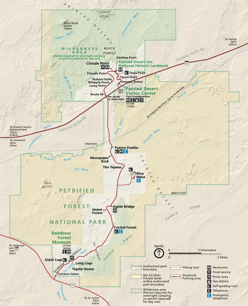 Petrified Forest National Park Az Facts Travel Planner