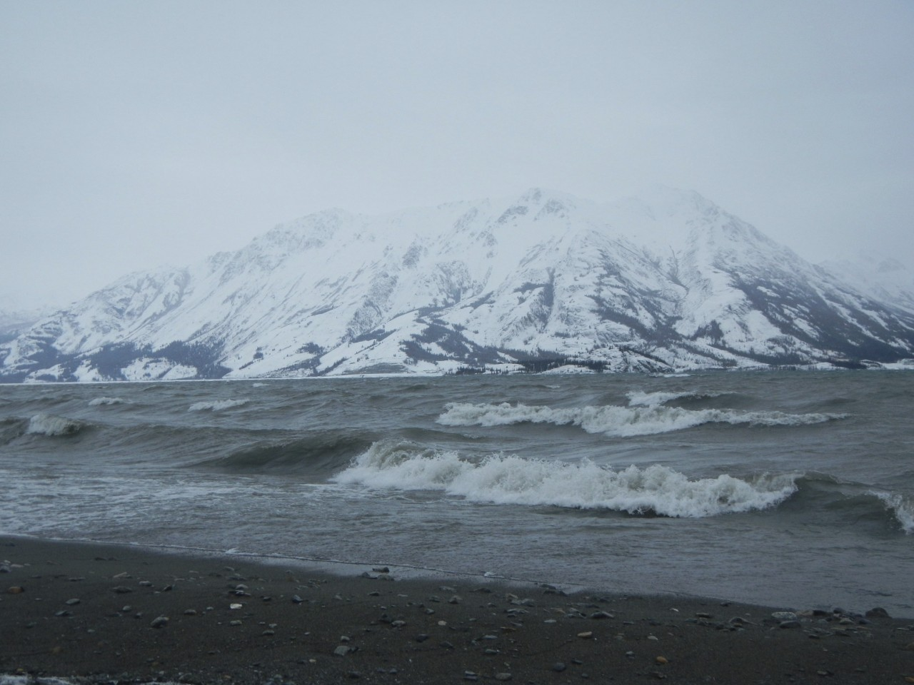 Kluane Lake with waves