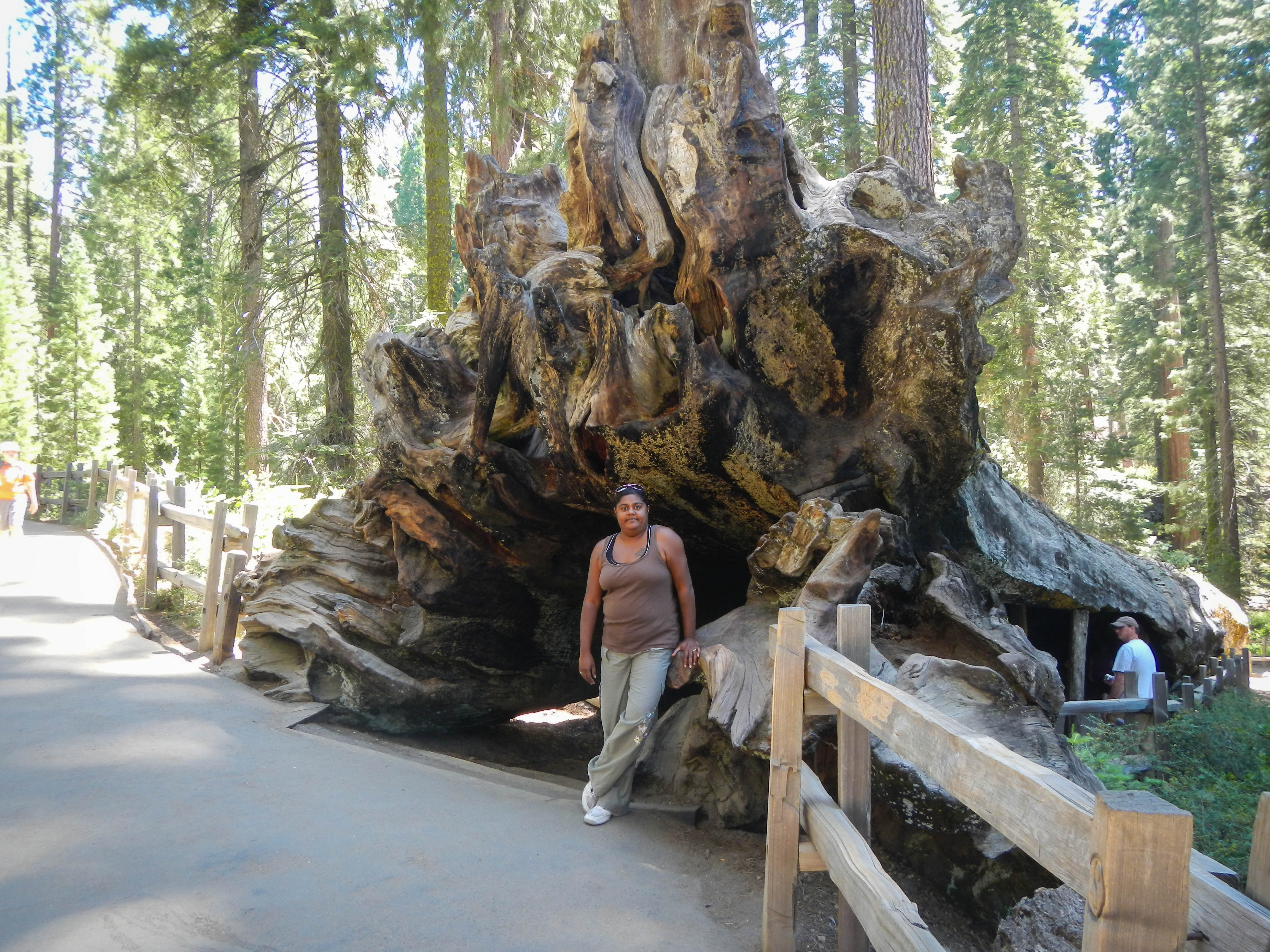 Kings Canyon National Park Guide Photo Essay