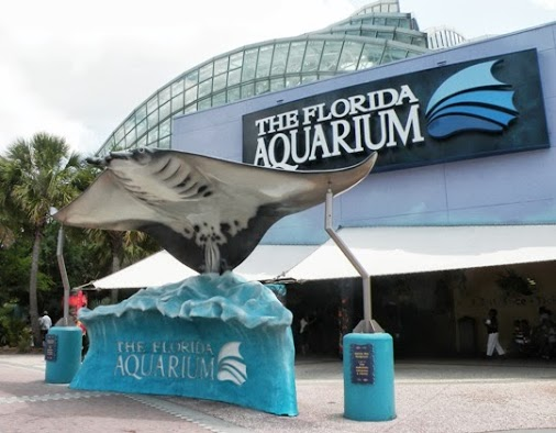 The Florida Aquarium Package