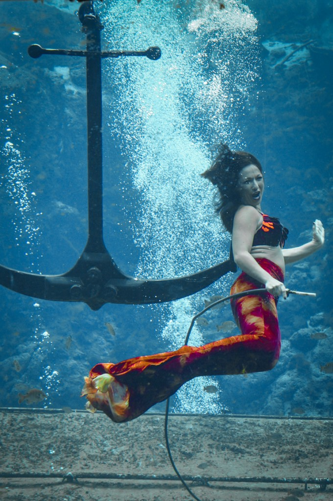 Don't miss the live Mermaids in Weeki Wachee State Park