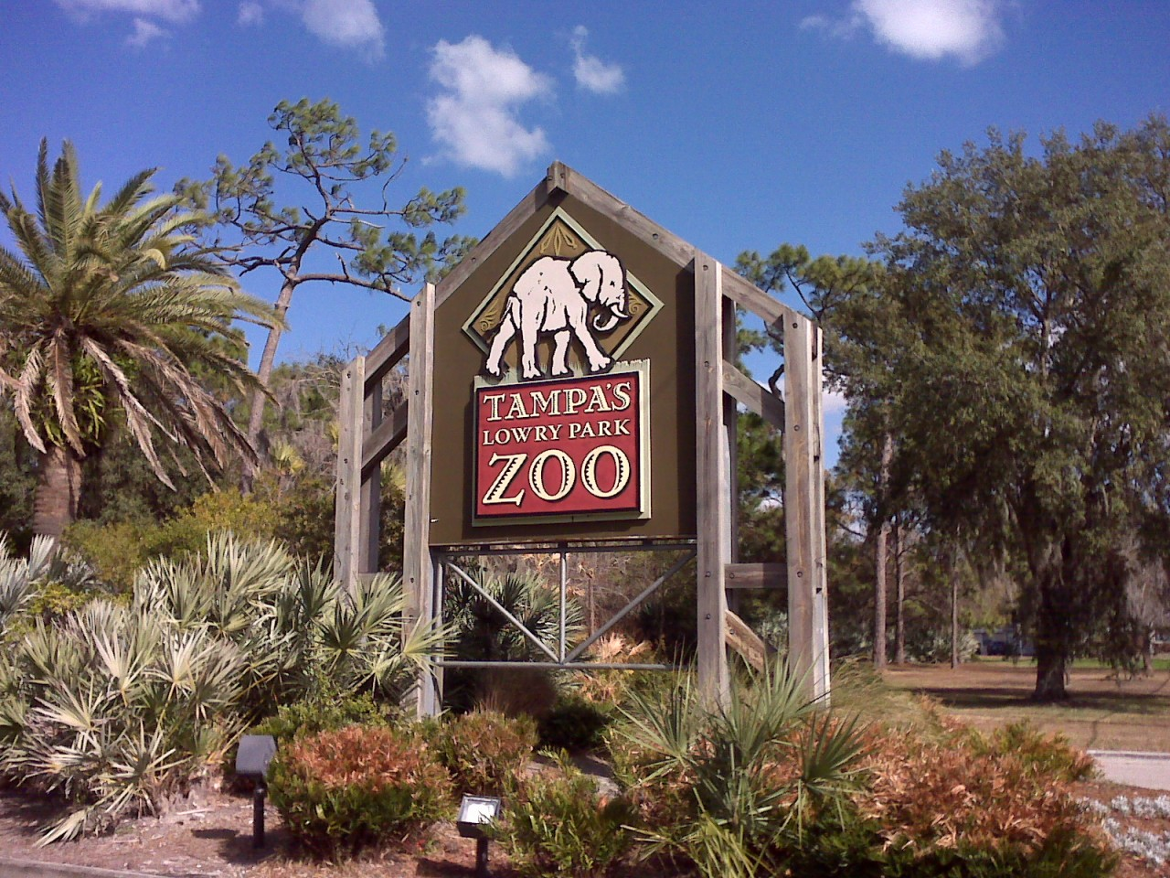 Tampa Travel Guide Lowry Park Zoo