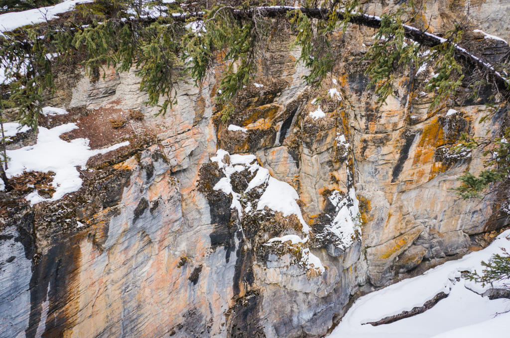 A look into the Maligne Canyon