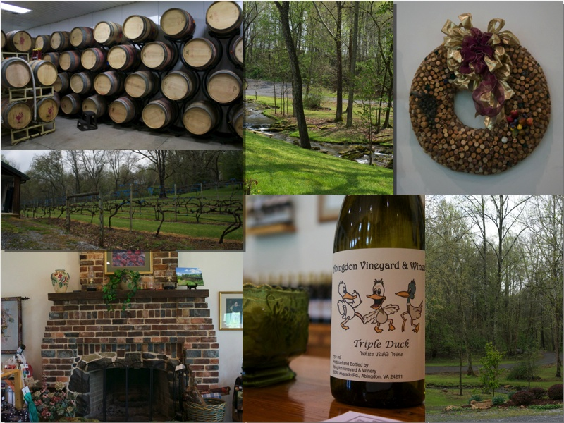 Abingdon Vineyard and Winery