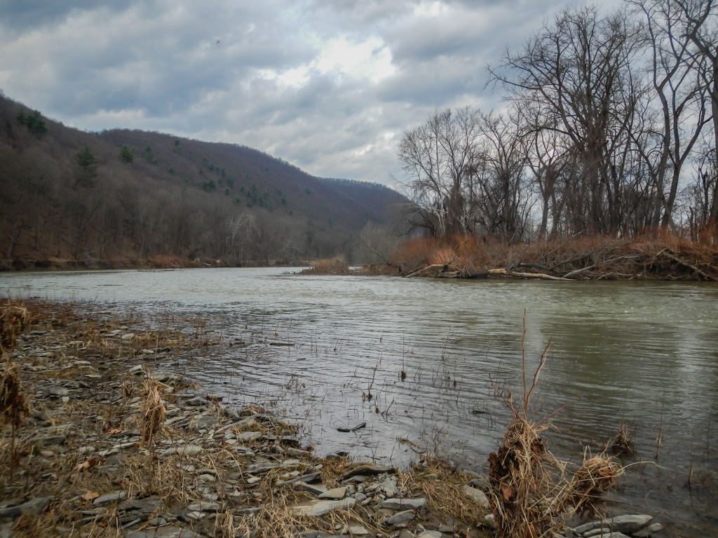 View of the Chemung River