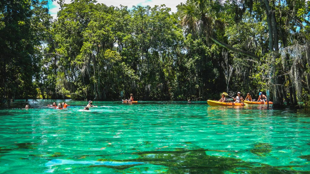 Kayaking Citrus County 6 Low-res