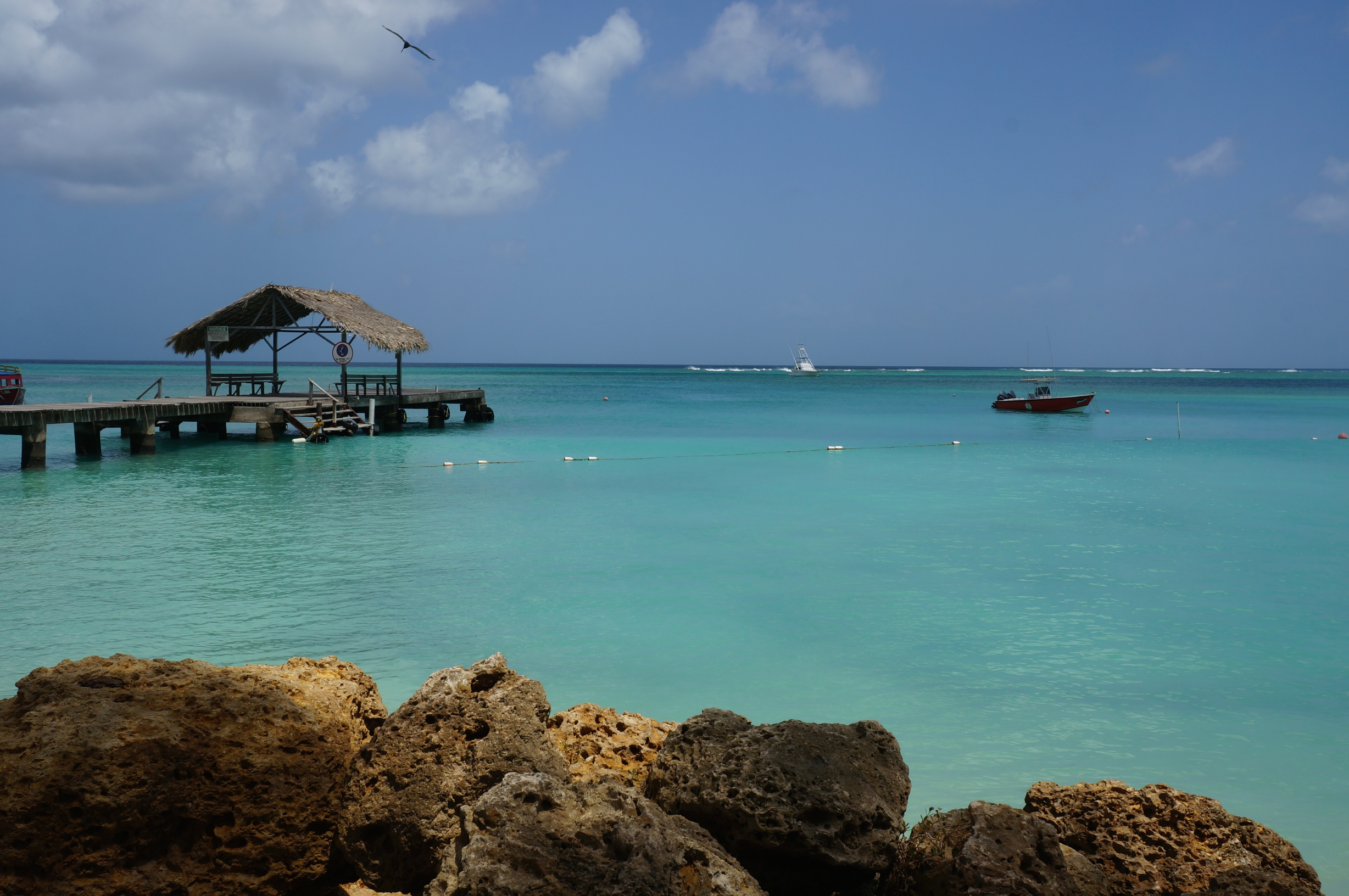 Visiting Tobago For The Uk Traveler On A Budget