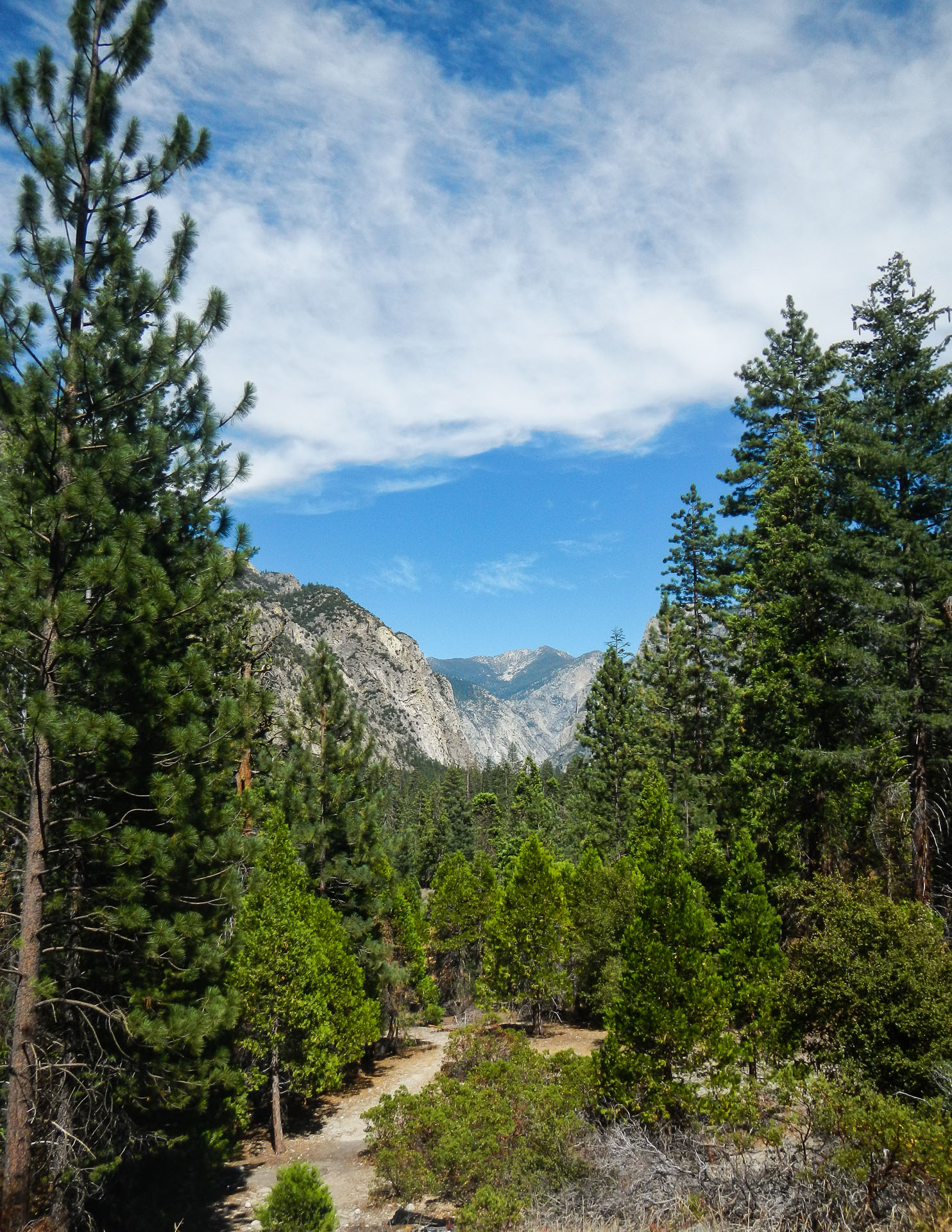 View from the Bottom -Kings Canyon National Park, California