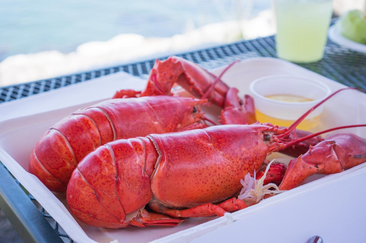 Best Lobster Restaurant In Portland Maine